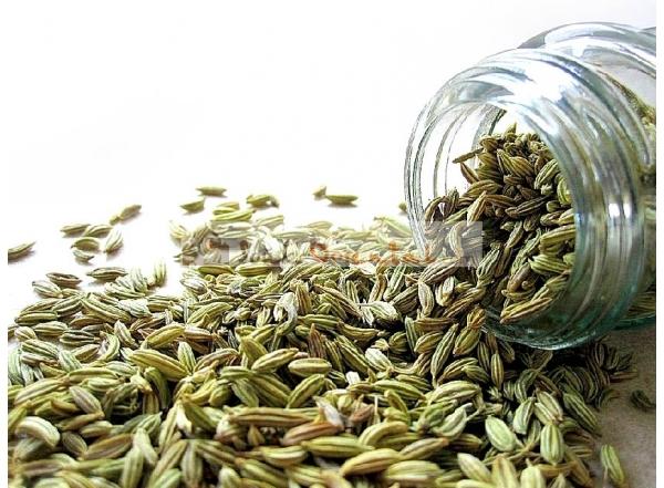 Graines de Fenouil haute qualité 400 gr