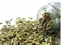Natural Fennel Seeds