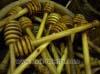 Tablespoon olive wood honey