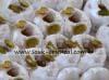 Kaak anbar Tunisian pastry 500 gr